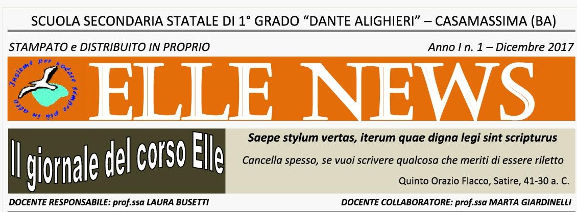 Elle News n. 11